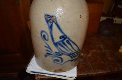 cruche à oiseau 2 gallons 6
