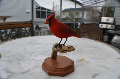 cardinal sculpté 6