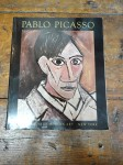 Pablo Picasso, the museum of modern art, New York